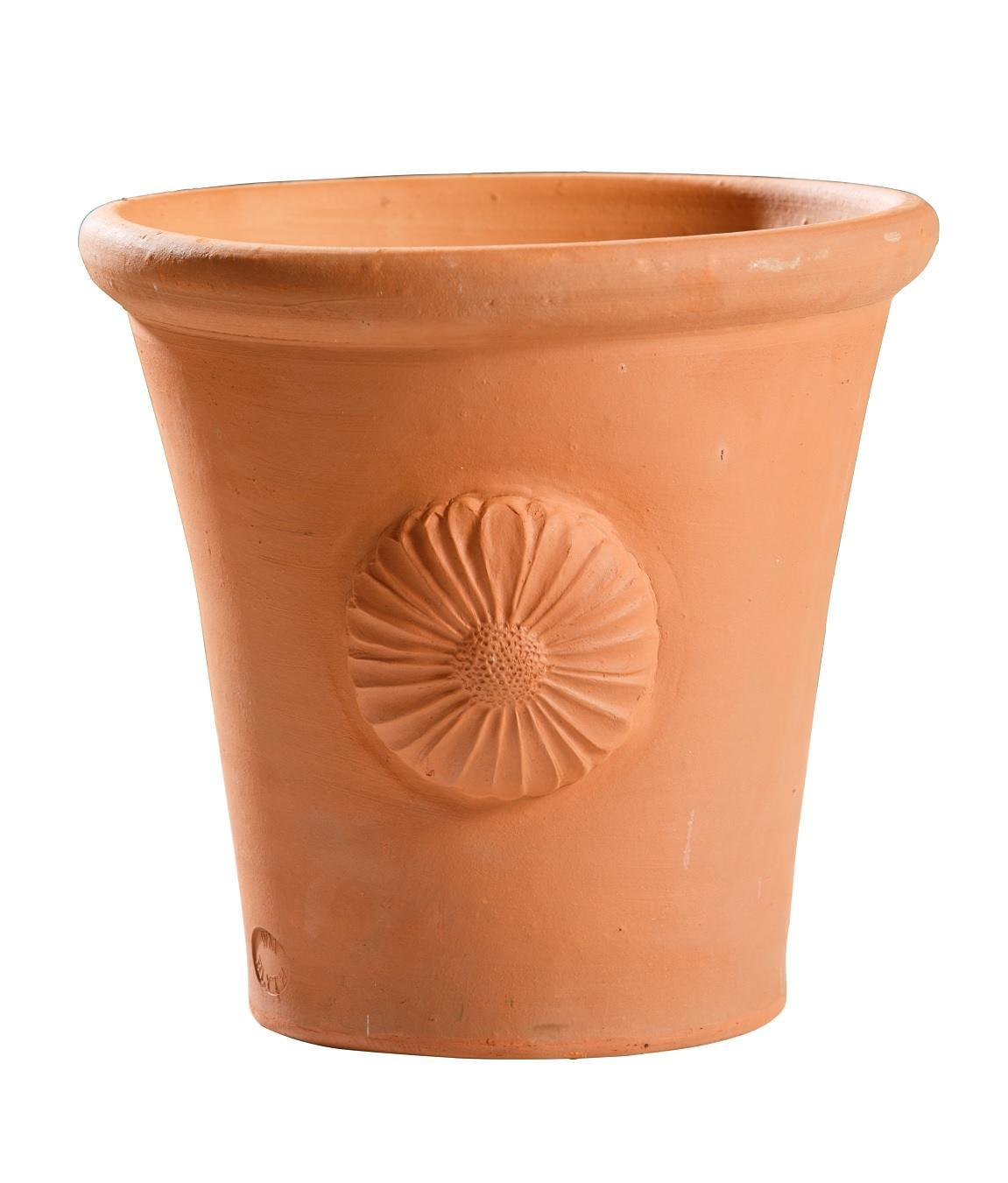 Flowerpot with daisy