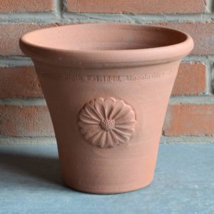 Small Flowerpot with Daisy